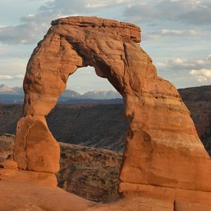 delicatearch